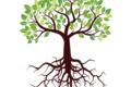 【算命学で開運】2020年の運勢─大樹の人─