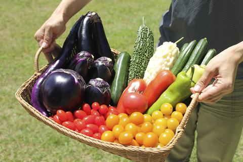 野菜を育成&投稿でプレゼントがもらえる! 「サントリー本気野菜」写真投稿キャンペーン