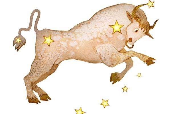 【星座占い】2020年下半期の運勢-おうし座(牡牛座)-