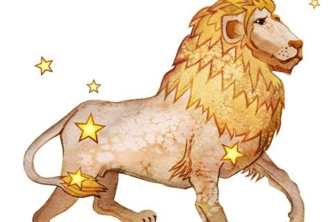 【星座占い】2020年下半期の運勢-しし座(獅子座)-