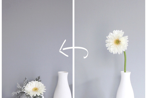花は腐る前に捨てる。そうすれば運気は上がる。