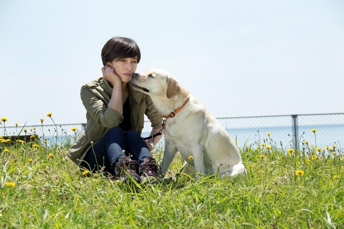 滝川クリステルさんインタビュー 前編 「ペットビジネスの裏にある、動物殺処分の現実を知ってほしい」