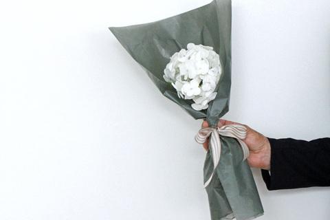 男性に贈るならあじさいの花束を。モテる女は観葉植物を選ばない。