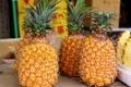 トロピカルフルーツが驚くほど安価に!沖縄・地元の人が利用する産直の直売所3選