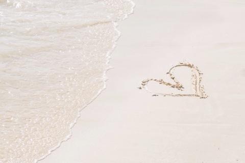 海老蔵・麻央夫妻の生き様に見る「夫婦の恋、家族の愛」
