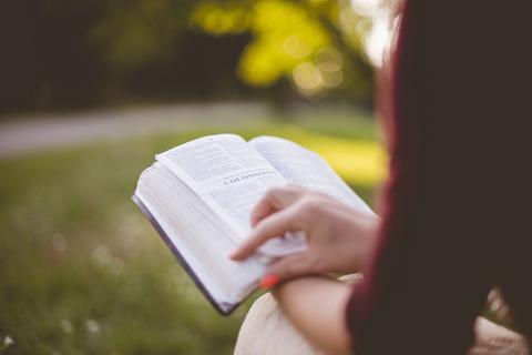 本棚は脳や心と直結している。本を読むことは生きること【本棚百景#1】