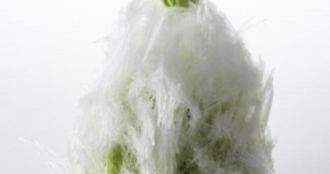 天然氷から生まれた「ふわっふわ」のかき氷をニューオータニで