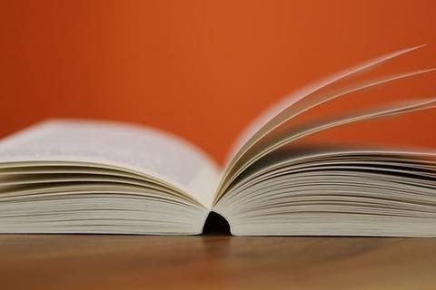 夏の終わりのノスタルジア - 大人の読書感想文