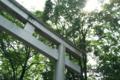 大國魂神社(府中) - 恋愛運・人脈運にご利益があるパワースポット