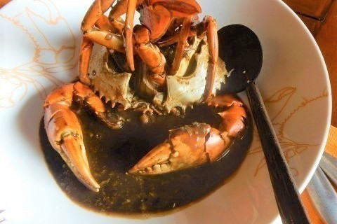 絶品カニ料理を発見! カニ味噌とスパイシーソースの組み合わせがたまらない【オトナの美旅スタイル #23】