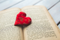 チョコから卒業!? 『バレンタインの本』が面白い【積読を崩す夜 #20】