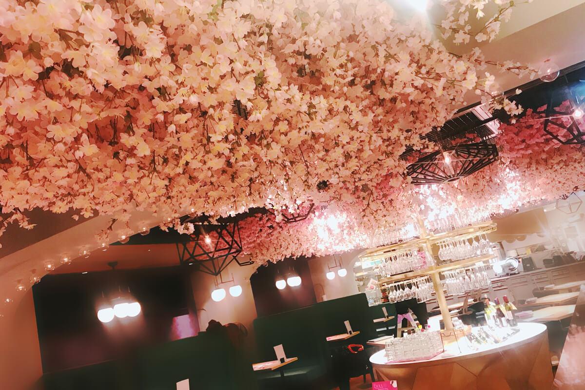 """""""インドア花見""""がトレンド。店内で満開の桜を楽しめるワインバル"""