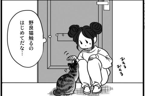 「ドアを開けたら猫がいた」 ただいまみいちゃん#1