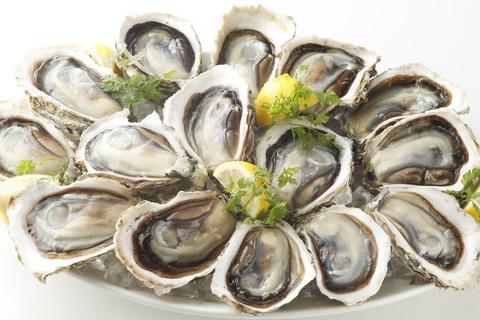 """""""海のチーズ""""岩牡蠣が旬! 産地ごとの食べ比べもおすすめ"""