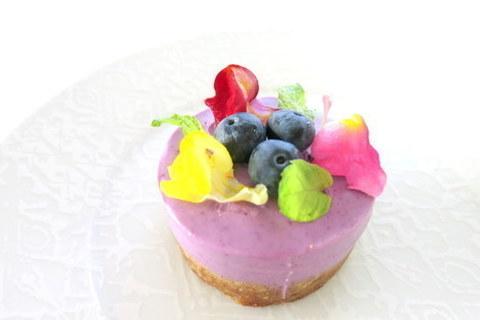 #6 マキベリー 【低カロリーで栄養豊富!ウワサのスーパーフード大全】